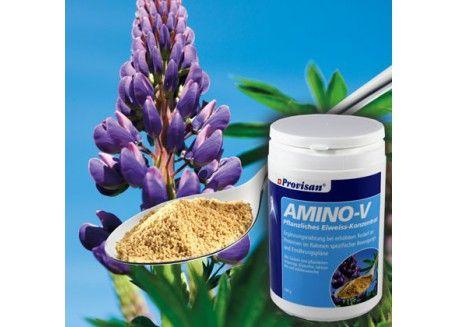 Amino V Granulat 540g